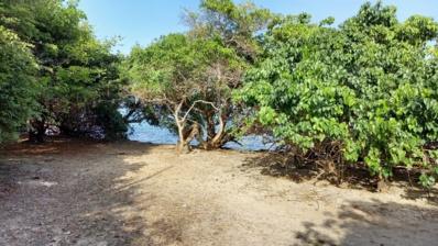 Plage de Baie Coco