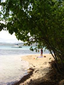 Visite Ilet Madame Martinique