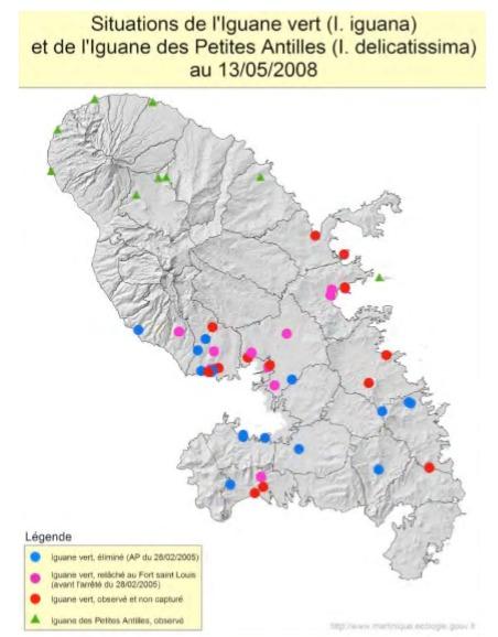 Carte des emplacements d'iguanes en Martinique