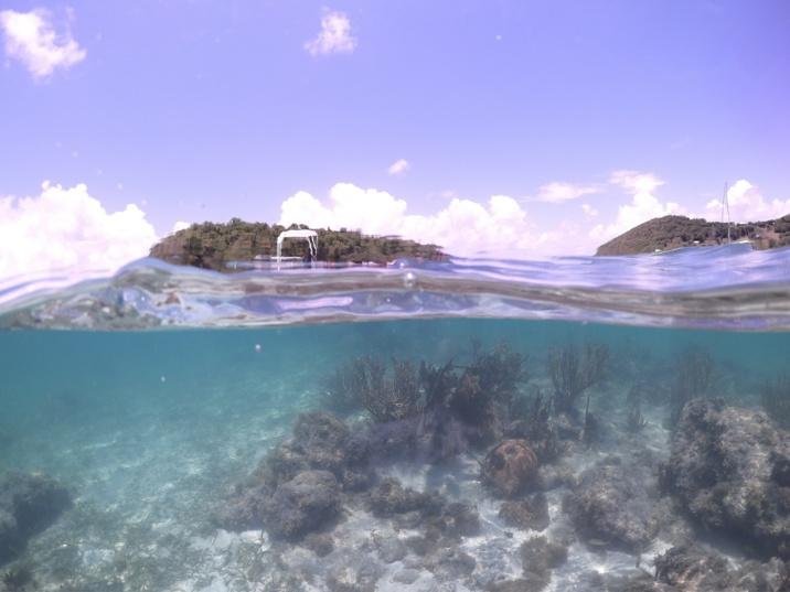 fonds marin à proximité de l'îlet Madame
