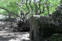 Ruines archéologiques ilet Chancel