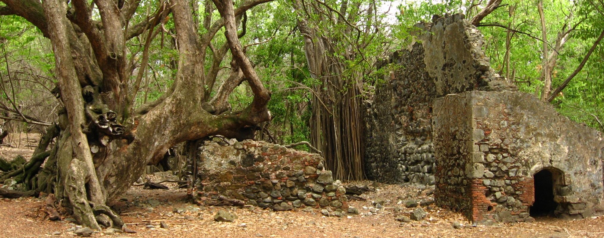 Site archéologique, îlet Chancel Martinique