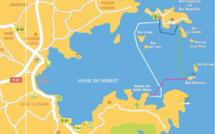 Nos circuits découverte en bateau dans la Baie du Robert